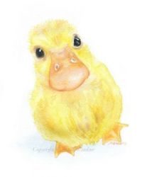 Duckling Watercolor Painting