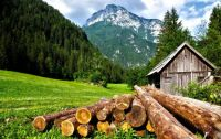 mountain cabin with logs