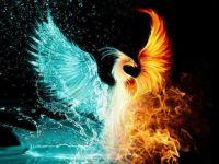 oheň nebo voda?