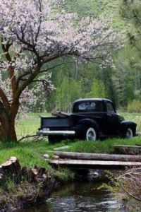 Spring time in Idaho