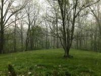 Kentucky Rain-4032x3024