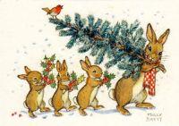 Molly Brett - Bunnies at Christmas