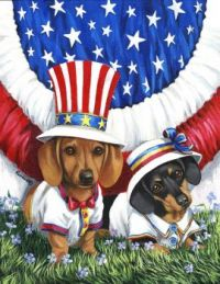 4th of July Dachshund