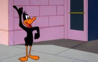 DAFFY DUCK !