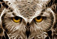 Freaky Looking Owl