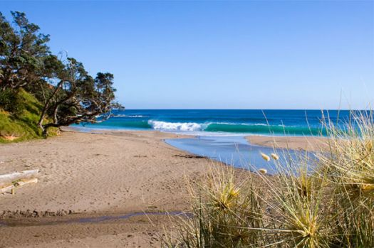 Whananaki Beach, Northland, NZ
