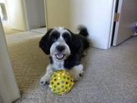 Me and my Ball