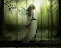 beautiful-fairies-fairies-16816646-800-640