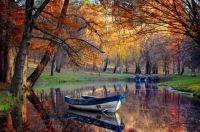Autumn Stillness. . .