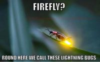 Firefly - Nope