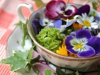 chamomile-and-other-flowers-in-tea