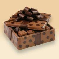 Chocolates Series Photo 4