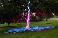 lightening on tree
