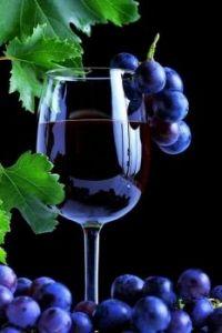 Wijntje!