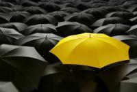black-and-yellow-umbrella