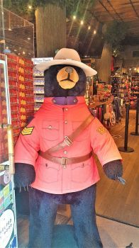 Officer Bear