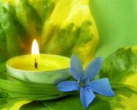 Candle & flower