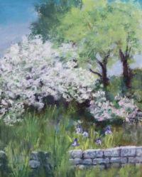 Spring in Groton
