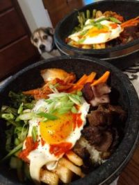 Dolsot bibimbap with kimchi juice - dog is hoping for dinner