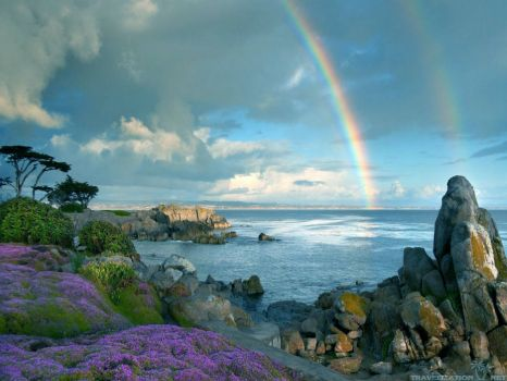 BEAUTIFUL RAINBOWS SERIES....
