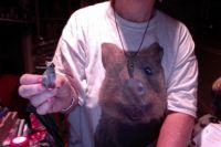 My Quokka Tee Shirt and Figurine