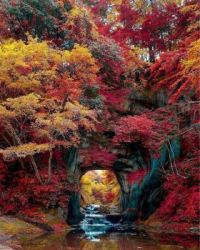 The portal to autumn.