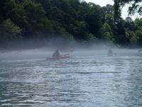 Into the fog, medium