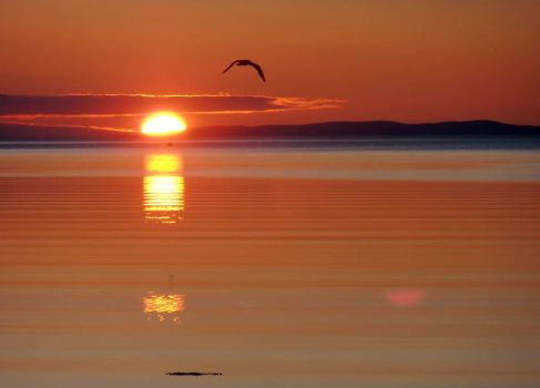 Sunrise in the Shearstown Estuary, Bay Roberts, NL Canada