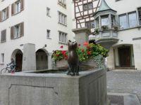 Cat in Stein Am Rhein