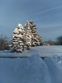 snow can be pretty after the driveway and sidewalk are cleared.
