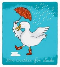 Nice weather for ducks!!