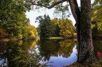 Zámocký park, Česká republika