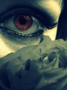 my eye with a rose