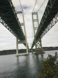 Under the Tacoma Narrow Bridges  2018