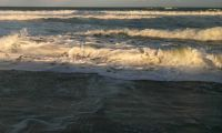 Late Afternoon at the Beach