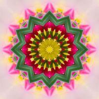 kaleidoscope 338 a star very large