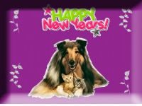 Have a Yappy, Happy New Year
