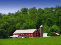 Adams_Township_Sunny_Farm