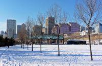 A walk along the Saskat River - Edmonton in winter