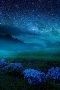 Blue beauty :-)