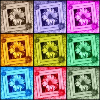 Wednesday Collage - Daisies - small