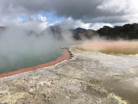 Hot Springs Of New Zealand 1