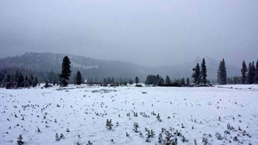 Yosemite Nnl Park 5.15.15 under 2' of snow