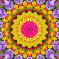kaleidoscope 341 back to colours small