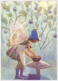 Fairy with berries