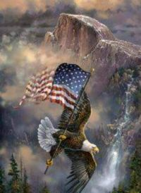 America! Land of the free and home of the brave!!