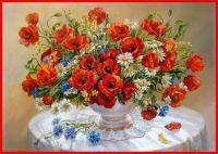 Daisies & Poppies