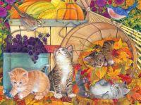 Harvest kittens by Amy Rosenberg