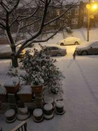 Winter Undisturbed