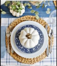 Blue and White Placesetting